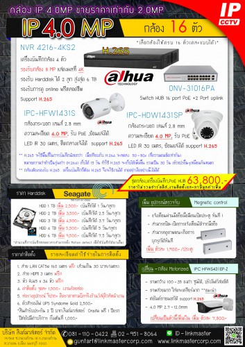 16 IP Cam 4.0 MP Dahua
